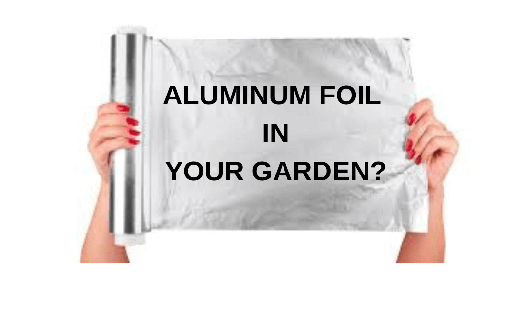 Does Aluminum Foil Help Plants Grow?