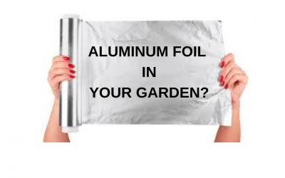 Does Aluminum Foil Help Plants Grow?