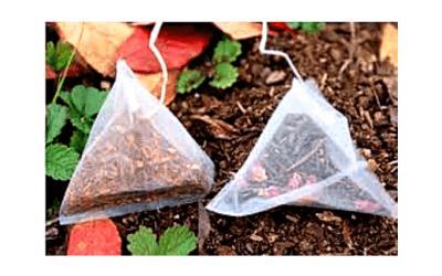 Tea Leaves For Gardening?