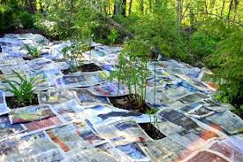 gardening with newspaper in mulch
