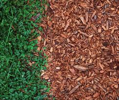 organic mulch mulching