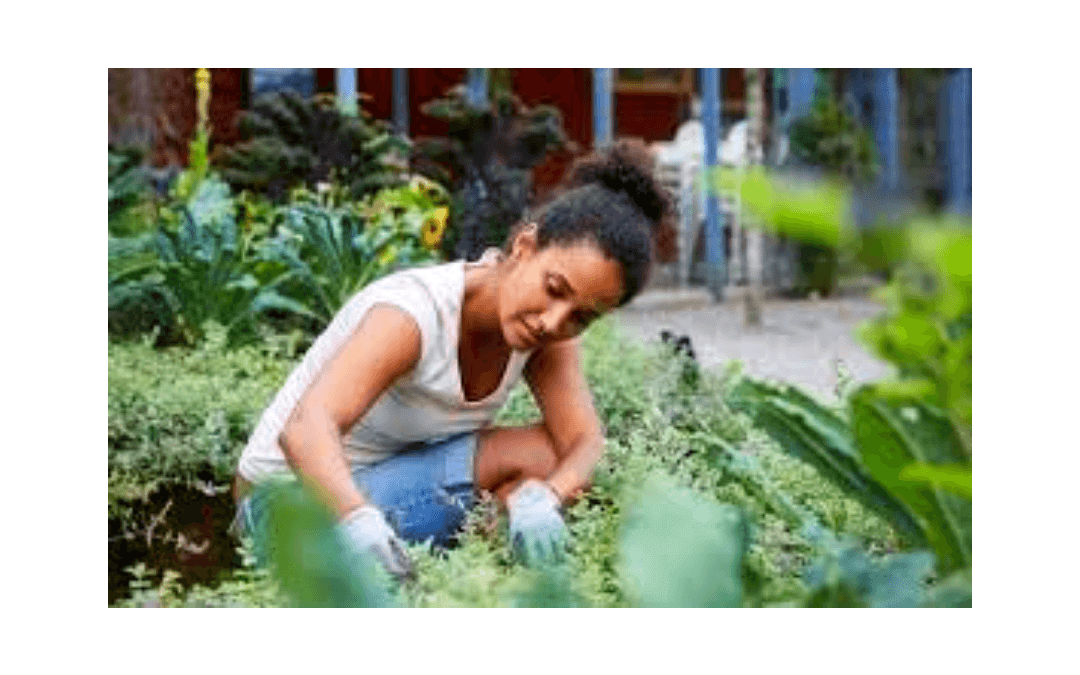 Gardening and Physical Health: What is the Connection?