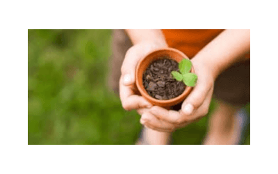 How Gardening Can Work Wonders For Your Health